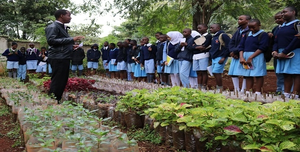Mr. Patrick Wanjohi taking the pupils through Environment for Sustainable Development (ESD) during a school visit at CEMASTEA.
